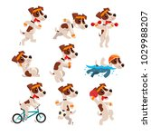 cute sportive jack russell... | Shutterstock .eps vector #1029988207