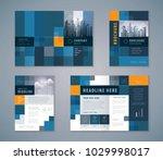 cover book design set  abstract ... | Shutterstock .eps vector #1029998017