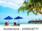 sunbeds with umbrellas on an...   Shutterstock . vector #1030018777