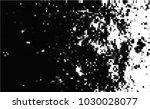 black and white halftone....   Shutterstock .eps vector #1030028077