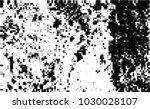black and white halftone....   Shutterstock .eps vector #1030028107