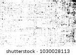 black and white halftone....   Shutterstock .eps vector #1030028113