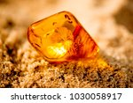 amber in sun on a beach of the... | Shutterstock . vector #1030058917