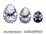 easter eggs set hand drawn... | Shutterstock .eps vector #1030289503