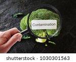 contamination label on broccoli ... | Shutterstock . vector #1030301563