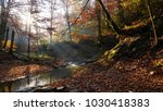 the river in autumn forest and... | Shutterstock . vector #1030418383