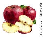 red apple on white background.... | Shutterstock . vector #1030419463