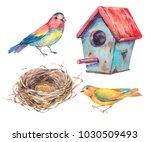 set of watercolor illustration... | Shutterstock . vector #1030509493