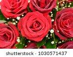 bouquet of fresh roses  flower... | Shutterstock . vector #1030571437