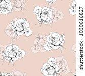 sketch roses illustration... | Shutterstock . vector #1030616827