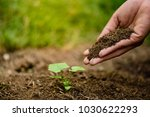 hands holding soil to plant a... | Shutterstock . vector #1030622293