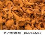 mushroom chanterelle  background | Shutterstock . vector #1030632283