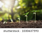 concept agriculture planting... | Shutterstock . vector #1030637593