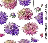 seamless pattern with asters.... | Shutterstock .eps vector #1030655137