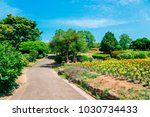 flower field and trees in... | Shutterstock . vector #1030734433