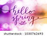 hello spring  vector lettering... | Shutterstock .eps vector #1030762693