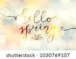 hello spring  vector lettering... | Shutterstock .eps vector #1030769107