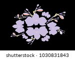abstract orchid pattern. gentle ... | Shutterstock .eps vector #1030831843