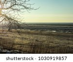 the gulf of riga in jurmala ... | Shutterstock . vector #1030919857