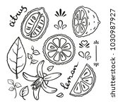 a set of vector hand drawn... | Shutterstock .eps vector #1030987927