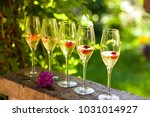 summer drink. champagne with... | Shutterstock . vector #1031014927