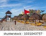 playa paraiso  mexico  ... | Shutterstock . vector #1031043757