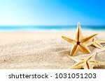 background of beach and shell... | Shutterstock . vector #1031051203