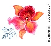 watercolor orchids on a white... | Shutterstock . vector #1031068327
