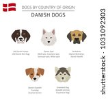 dogs by country of origin.... | Shutterstock .eps vector #1031092303