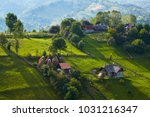 springtime rural scenery in a... | Shutterstock . vector #1031216347