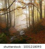 beautiful autumn sunrise... | Shutterstock . vector #1031218093
