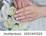 bridal image  splendid and... | Shutterstock . vector #1031342323