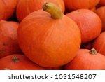 a lot of mini pumpkin at... | Shutterstock . vector #1031548207