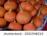 a lot of mini pumpkin at... | Shutterstock . vector #1031548213