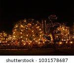 night lighting and tree outdoor ... | Shutterstock . vector #1031578687