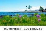 hawaiian scene with ocean ...   Shutterstock . vector #1031583253