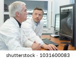medical specialist studying an... | Shutterstock . vector #1031600083