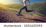 sports fitness woman trail... | Shutterstock . vector #1031635393