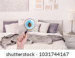 woman with magnifying glass... | Shutterstock . vector #1031744167