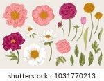 set. spring flowers. peonies ... | Shutterstock .eps vector #1031770213