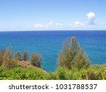 hawaiian landscapes  kauai ...   Shutterstock . vector #1031788537