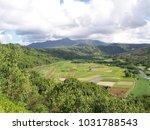 hawaiian landscapes  kauai ...   Shutterstock . vector #1031788543