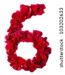 Number 6 Made From Red Petals...