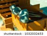 thai style dipper  thailand. | Shutterstock . vector #1032032653
