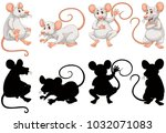 white rats in four actions... | Shutterstock .eps vector #1032071083