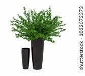 decorative trees planted in... | Shutterstock . vector #1032072373