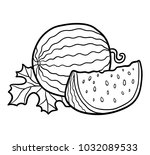 coloring book for children ... | Shutterstock .eps vector #1032089533