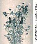 wild flowers. daguerreotype... | Shutterstock . vector #1032101467