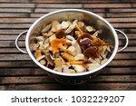mushrooms  bay bolete ...   Shutterstock . vector #1032229207