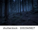 Mysterious Dark Blue Night...